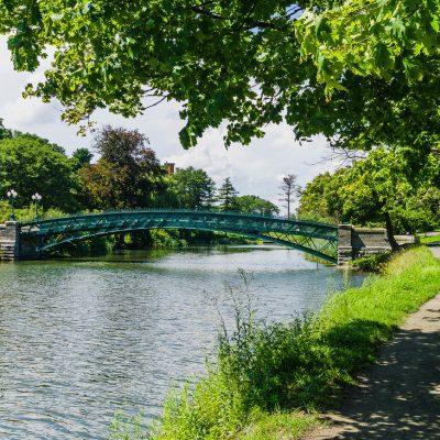 bridge in a park