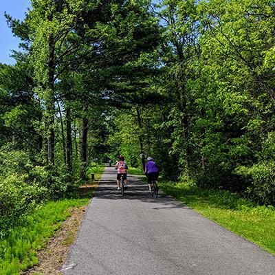 people riding bikes on a bike trail