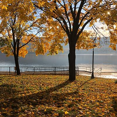 fall foliage in front of lake george