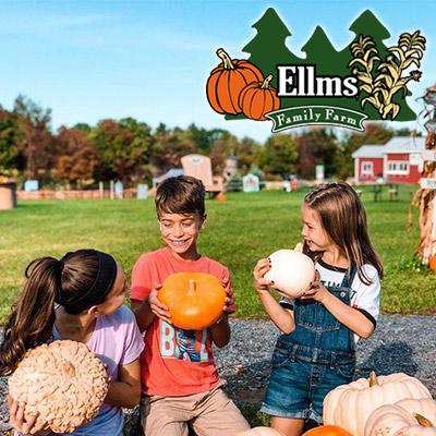 pumpkins and people at ellms family farm