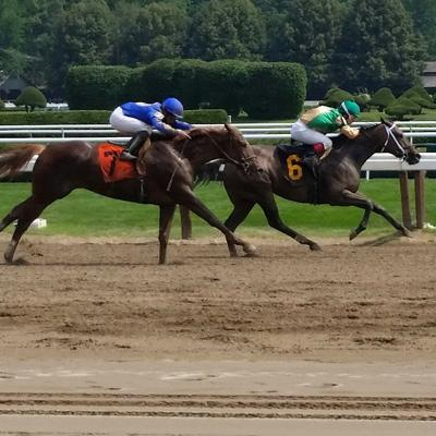 horses racing at saratoga