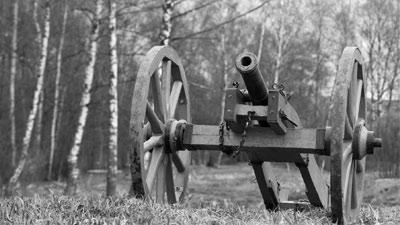 black and white cannon in the woods