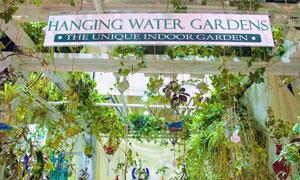 a sign over greenery saying Hanging Water Gardens
