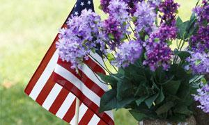 American flag next to purple flowers