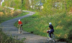 people riding on the bike trail
